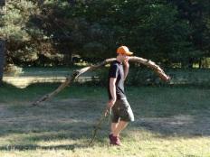 Coupe de bois 1