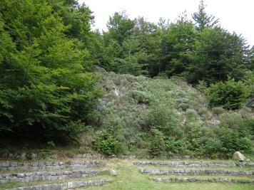 Joubert - Le Forum 2
